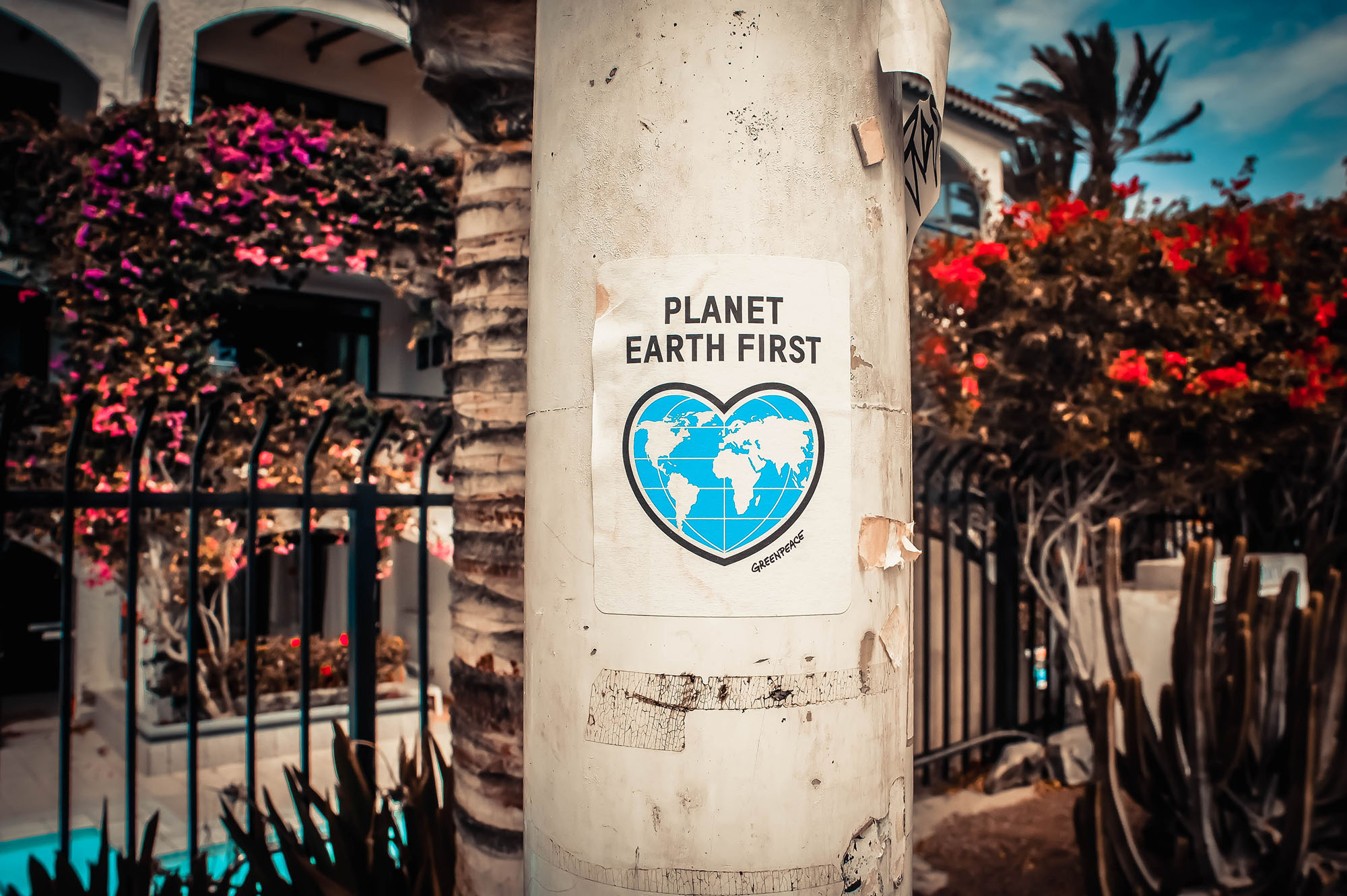 Calle con cartel de Greepeace. Planet Earth First.